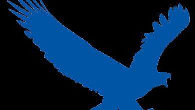 EagleGet بديل مجاني لـ Internet Download Manager واسرع بكثير ! 2