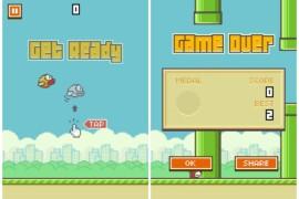 لعبة Flappy Bird تحصد نجاحا كبيرا يربح 50.000$ في اليوم