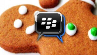 نسخة BBM لخبز الزنجبيل ولأي هاتف يعمل بنظام 2.3.3 2