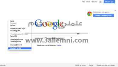 تحويل المواقع الى ملف PDF فى متصفح فايرفوكس 3
