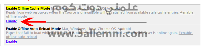 enable-offline-mode-in-google-chrome