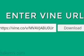 طريقه تحميل الفيديوهات من موقع Vine
