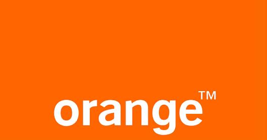 ارقام الـ DNS الخاصه بـ WE , TEData LinkDSL, Orange 4