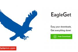 تحميل برنامج EagleGet 2016