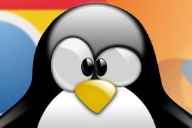 افضل 5 متصفحات انترنت لنظام لينكس
