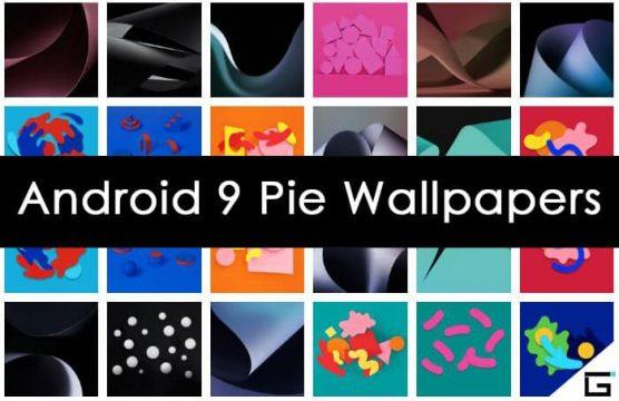 تحميل الخلفيات الرسميه لنظام أندرويد باي Android Pie بدقه عاليه 1