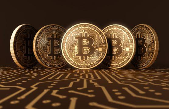 أهم العملات الرقمية المربحة في عام 2019 2