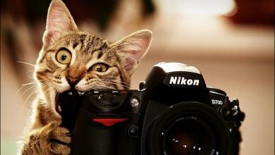 أفضل مواقع بيع الصور الفوتوغرافية و الربح منها 2020 6