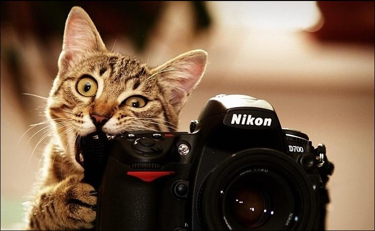 أفضل مواقع بيع الصور الفوتوغرافية و الربح منها 2020