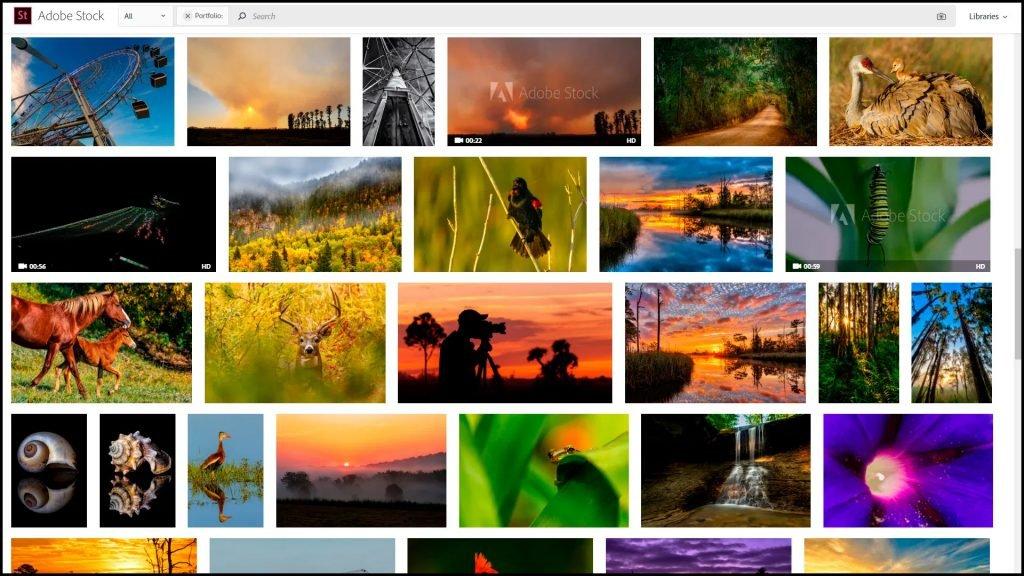 أفضل مواقع بيع الصور على الإنترنت 2