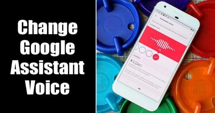 Photo of كيفية تغيير صوت مساعد جوجل على الاندرويد