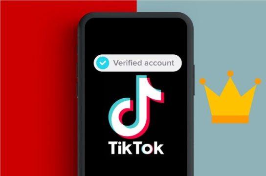 شرح طريقة تفعيل حساب تيك توك والحصول على العلامة الزرقاء 1